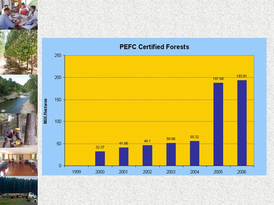 URUGUAY Y EL PEFC Cuenta desde 2006 con la serie de Normas T é cnicas UNIT 1151.