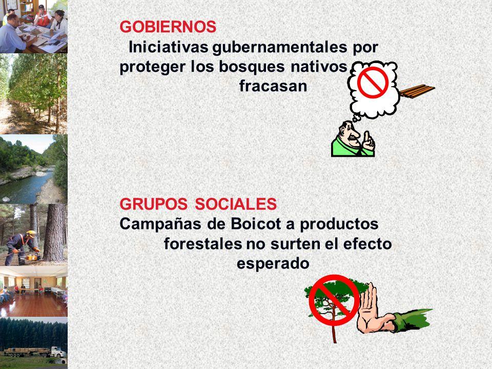 GOBIERNOS Iniciativas gubernamentales por proteger los bosques nativos fracasan GRUPOS SOCIALES Campañas de Boicot a productos forestales no surten el efecto esperado