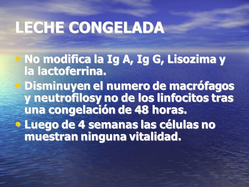 LECHE CONGELADA No modifica la Ig A, Ig G, Lisozima y la lactoferrina.