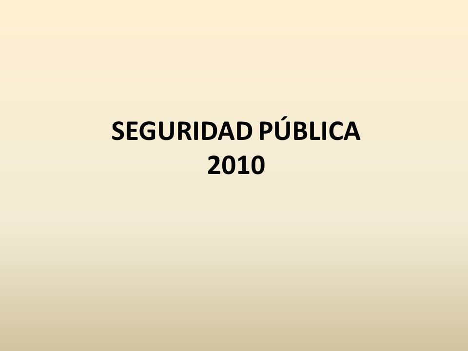 SEGURIDAD PÚBLICA 2010
