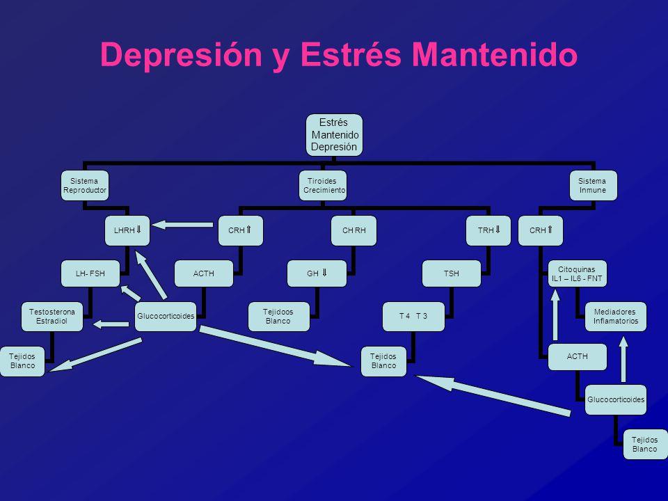 Depresión y Estrés Mantenido Estrés Mantenido Depresión Sistema Reproductor LHRH LH- FSH Testosterona Estradiol Tejidos Blanco Tiroides Crecimiento CR