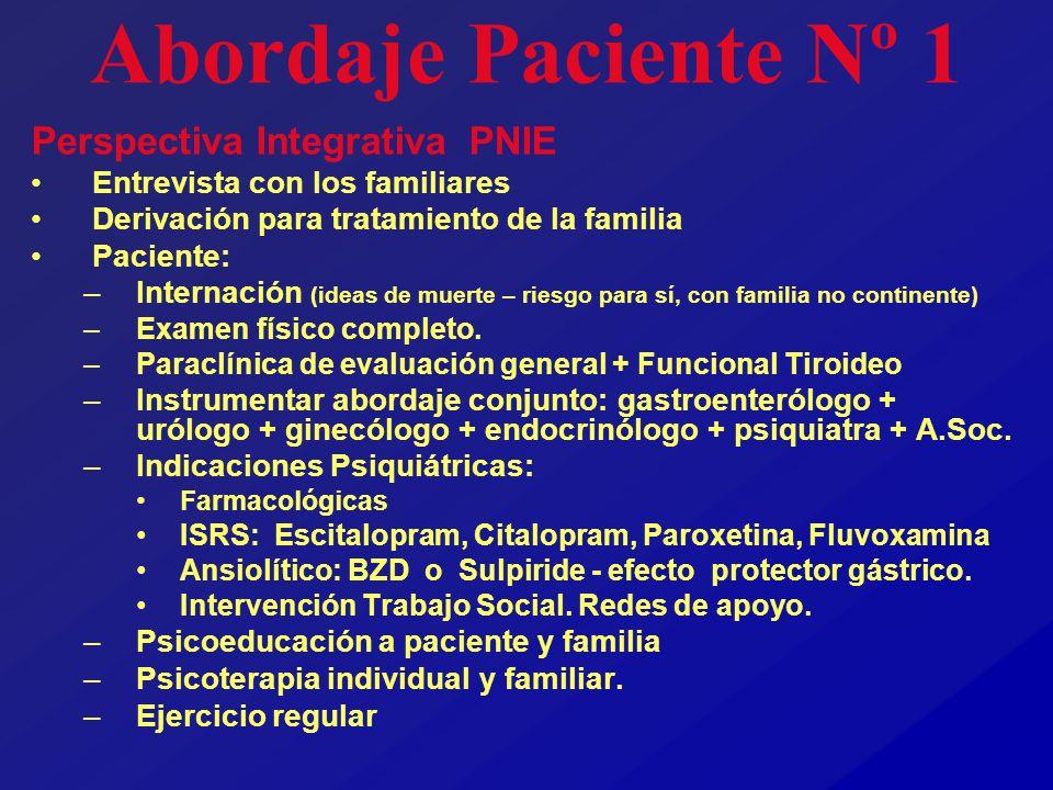 Abordaje Paciente Nº 1 Perspectiva Integrativa PNIE Entrevista con los familiares Derivación para tratamiento de la familia Paciente: –Internación (id