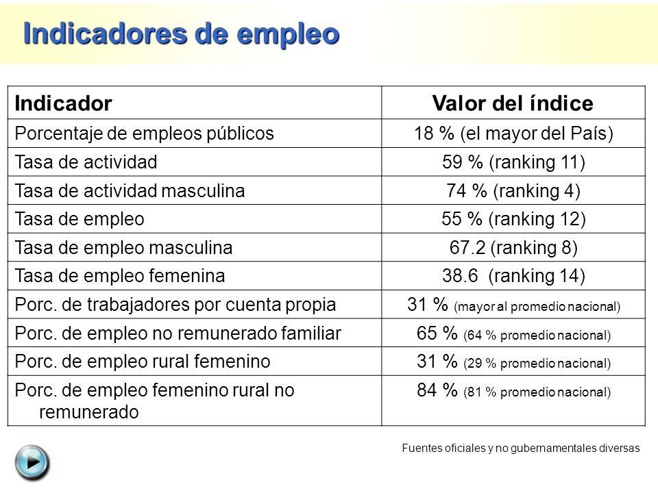 IndicadorValor del índice Porcentaje de empleos públicos18 % (el mayor del País) Tasa de actividad59 % (ranking 11) Tasa de actividad masculina74 % (r