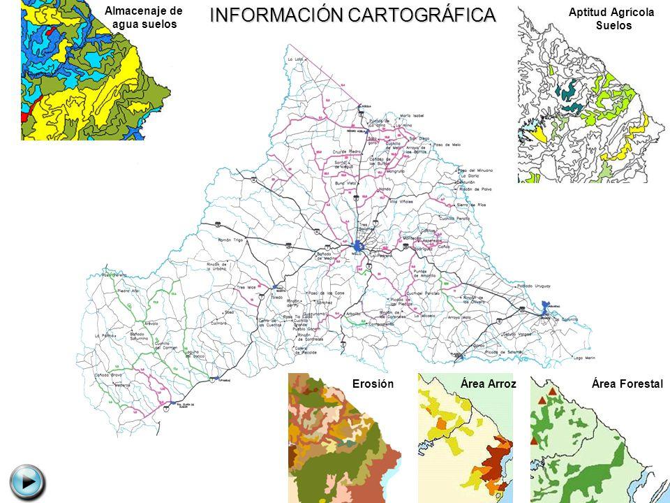 Aptitud Agrícola Suelos Área ForestalÁrea ArrozErosión Almacenaje de agua suelos INFORMACIÓN CARTOGRÁFICA