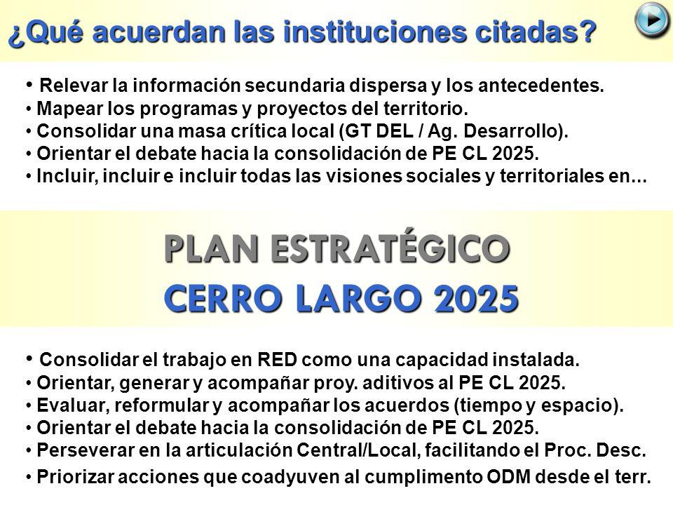 PLAN ESTRATÉGICO CERRO LARGO 2025 Relevar la información secundaria dispersa y los antecedentes. Mapear los programas y proyectos del territorio. Cons