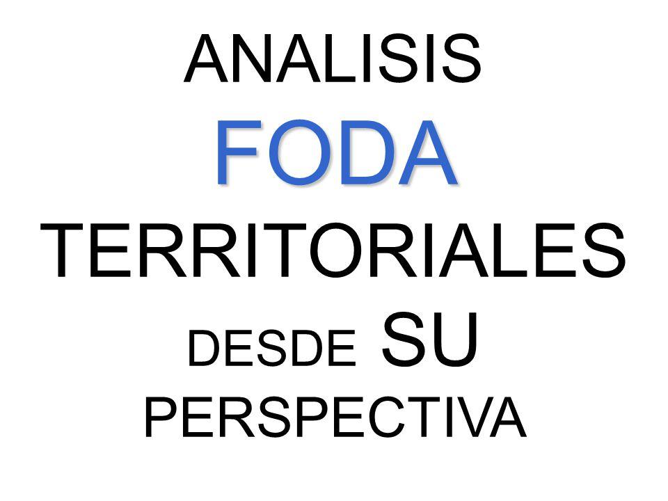 ANALISISFODA TERRITORIALES DESDE SU PERSPECTIVA