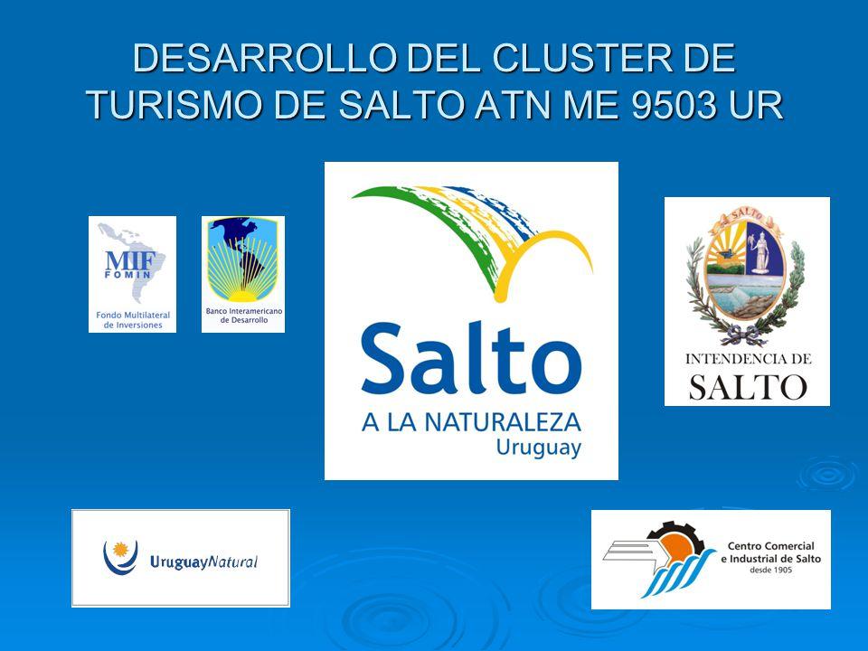 DESARROLLO DEL CLUSTER DE TURISMO DE SALTO ATN ME 9503 UR
