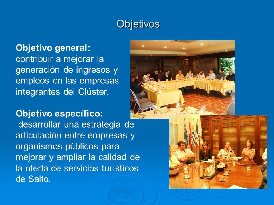 Objetivo general: contribuir a mejorar la generación de ingresos y empleos en las empresas integrantes del Clúster. Objetivo específico: desarrollar u