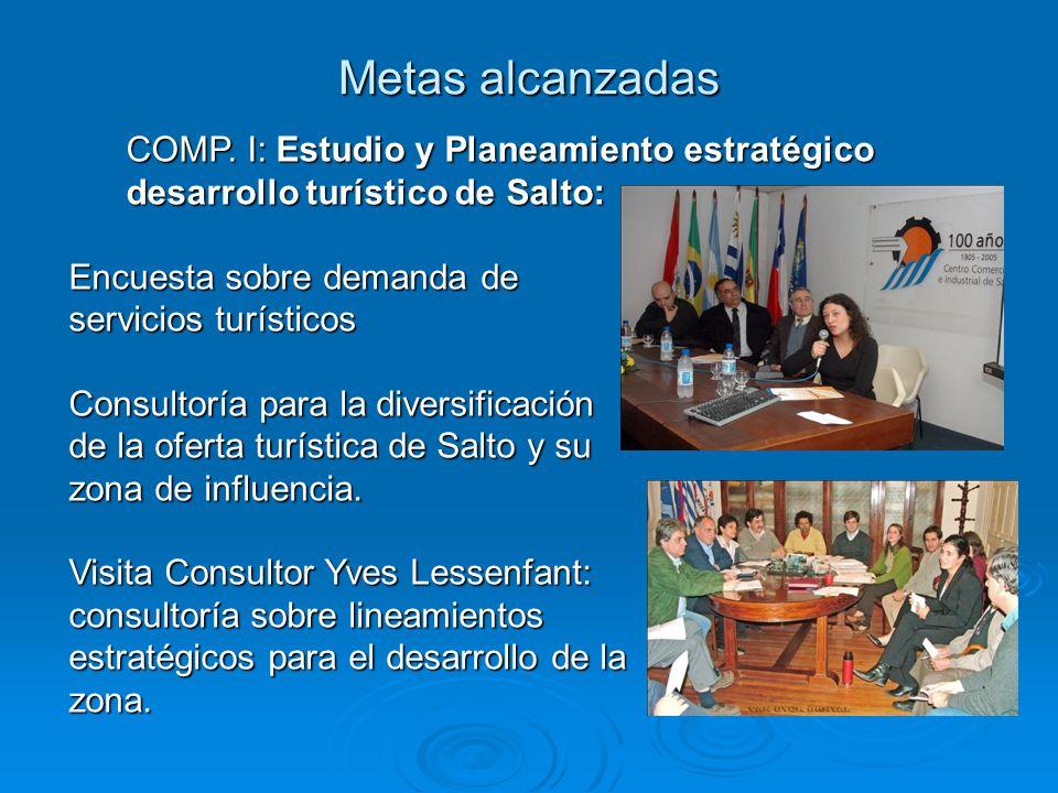 Metas alcanzadas COMP. I: Estudio y Planeamiento estratégico desarrollo turístico de Salto: Encuesta sobre demanda de servicios turísticos Consultoría