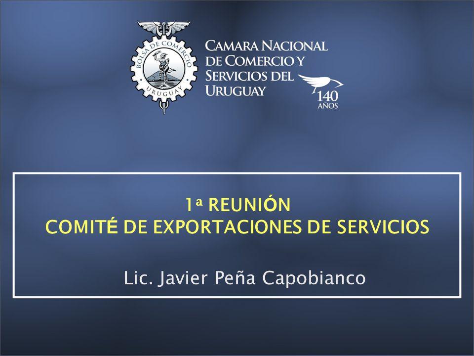 1 a REUNI Ó N COMIT É DE EXPORTACIONES DE SERVICIOS Lic. Javier Peña Capobianco