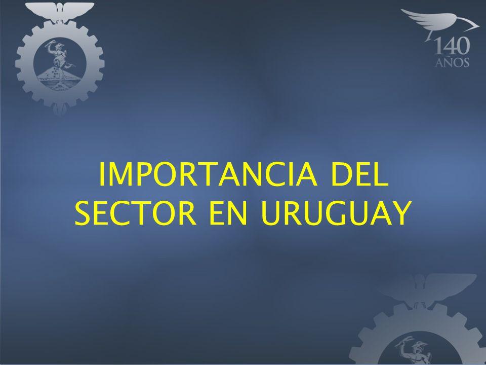 IMPORTANCIA DEL SECTOR EN URUGUAY