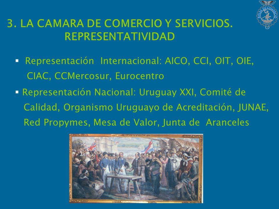 3. LA CAMARA DE COMERCIO Y SERVICIOS.