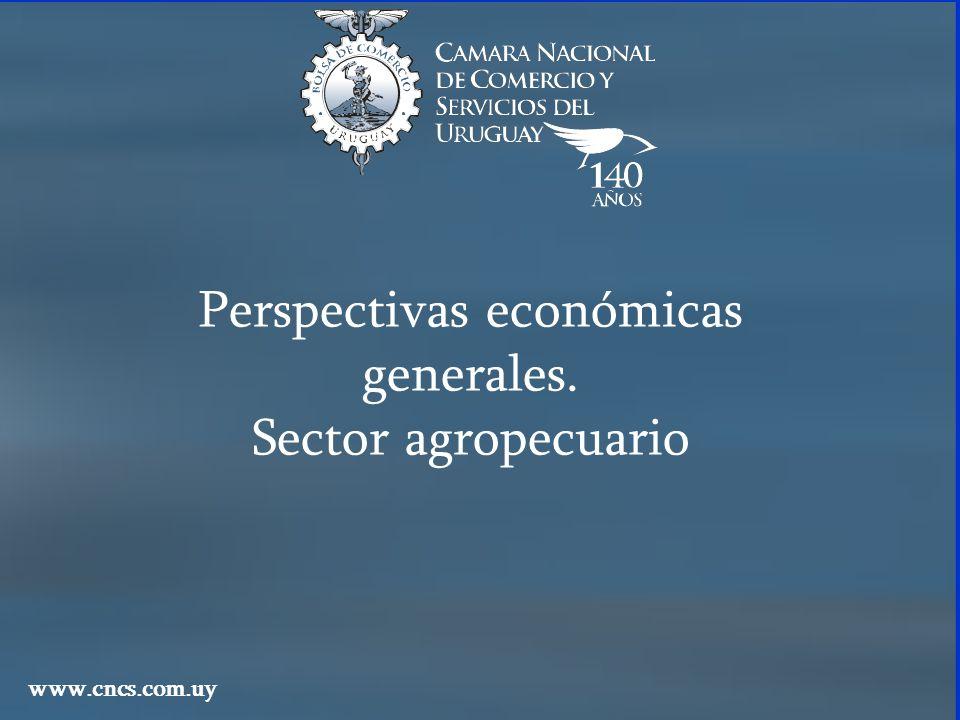 Perspectivas económicas generales. Sector agropecuario www.cncs.com.uy