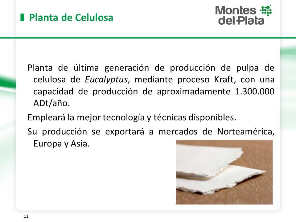11 Planta de Celulosa Planta de última generación de producción de pulpa de celulosa de Eucalyptus, mediante proceso Kraft, con una capacidad de producción de aproximadamente 1.300.000 ADt/año.