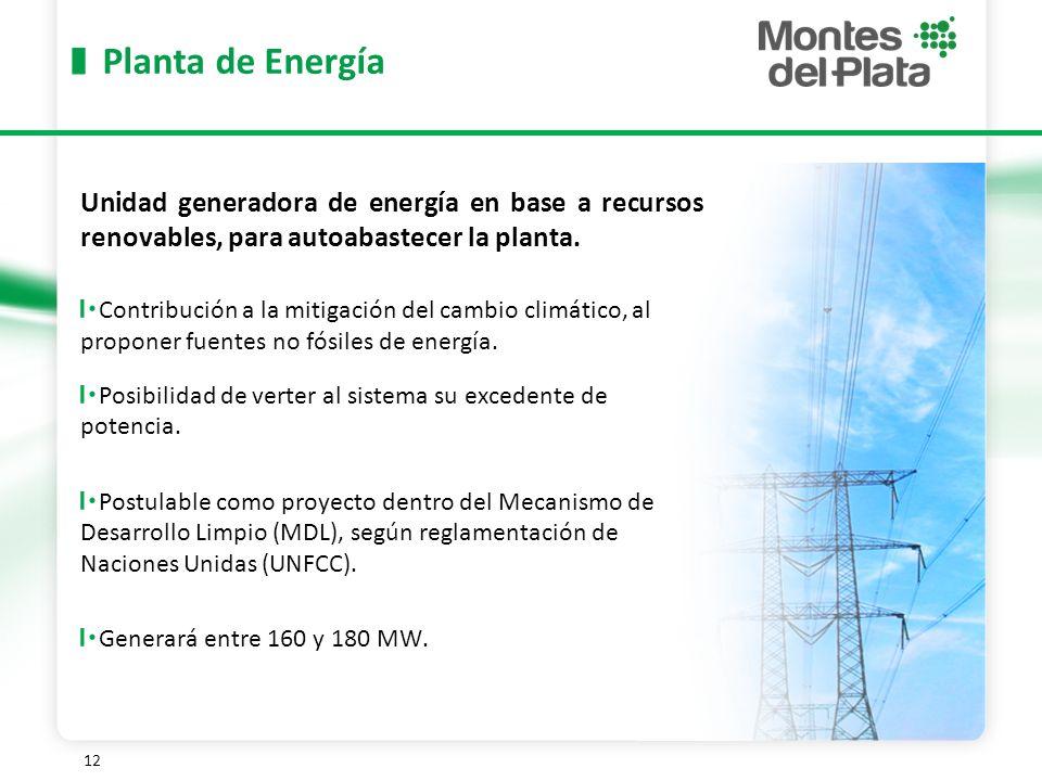 12 Planta de Energía Unidad generadora de energía en base a recursos renovables, para autoabastecer la planta.