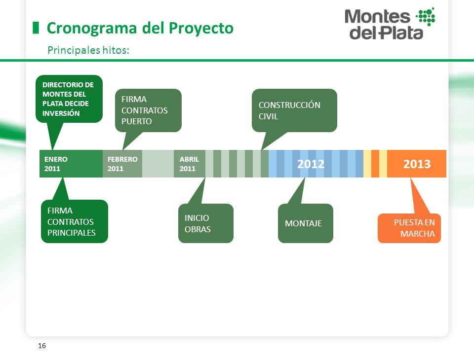 16 Cronograma del Proyecto Principales hitos: FIRMA CONTRATOS PRINCIPALES DIRECTORIO DE MONTES DEL PLATA DECIDE INVERSIÓN FIRMA CONTRATOS PUERTO INICIO OBRAS PUESTA EN MARCHA ENERO 2011 FEBRERO 2011 ABRIL 2011 2012 2013 CONSTRUCCIÓN CIVIL MONTAJE