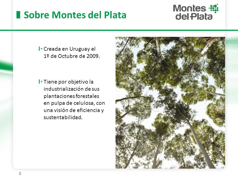 2 Sobre Montes del Plata Creada en Uruguay el 1º de Octubre de 2009.