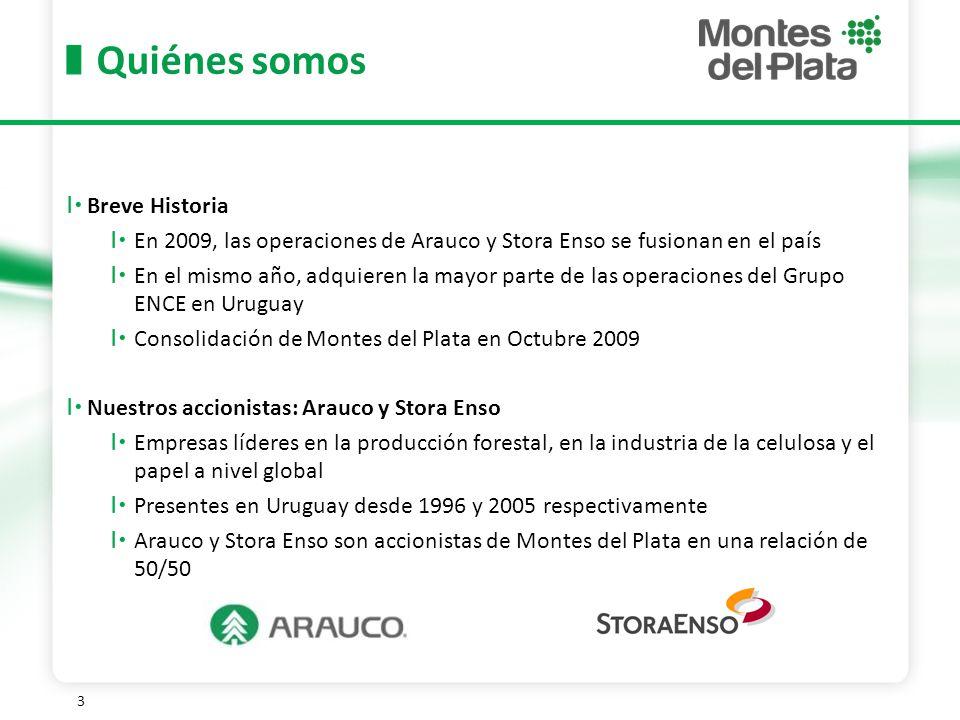 3 Breve Historia En 2009, las operaciones de Arauco y Stora Enso se fusionan en el país En el mismo año, adquieren la mayor parte de las operaciones del Grupo ENCE en Uruguay Consolidación de Montes del Plata en Octubre 2009 Nuestros accionistas: Arauco y Stora Enso Empresas líderes en la producción forestal, en la industria de la celulosa y el papel a nivel global Presentes en Uruguay desde 1996 y 2005 respectivamente Arauco y Stora Enso son accionistas de Montes del Plata en una relación de 50/50 Quiénes somos