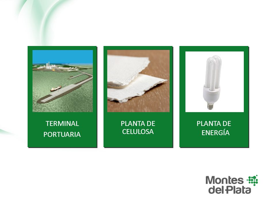 TERMINAL PORTUARIA PLANTA DE CELULOSA PLANTA DE ENERGÍA