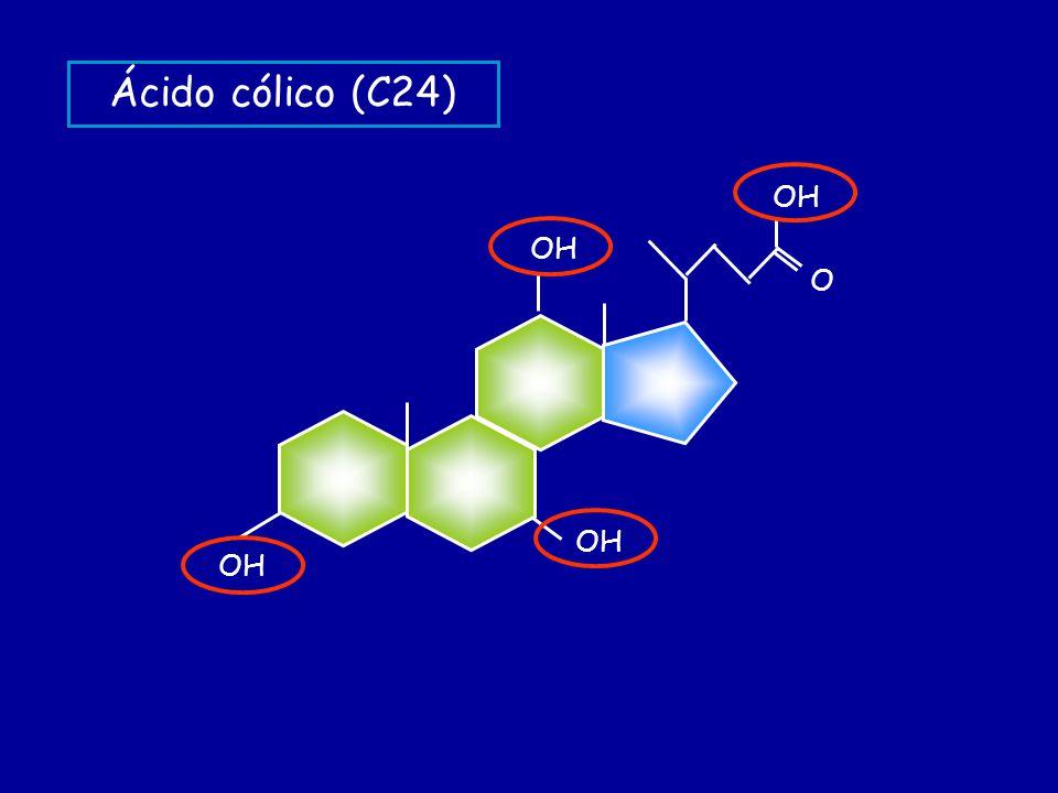 OH O Ácido cólico (C24)