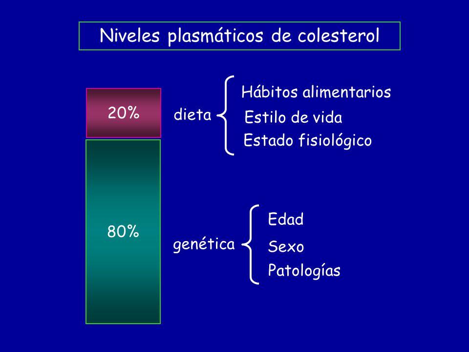 80% 20% dieta Hábitos alimentarios Estilo de vida Estado fisiológico genética Edad Sexo Patologías Niveles plasmáticos de colesterol