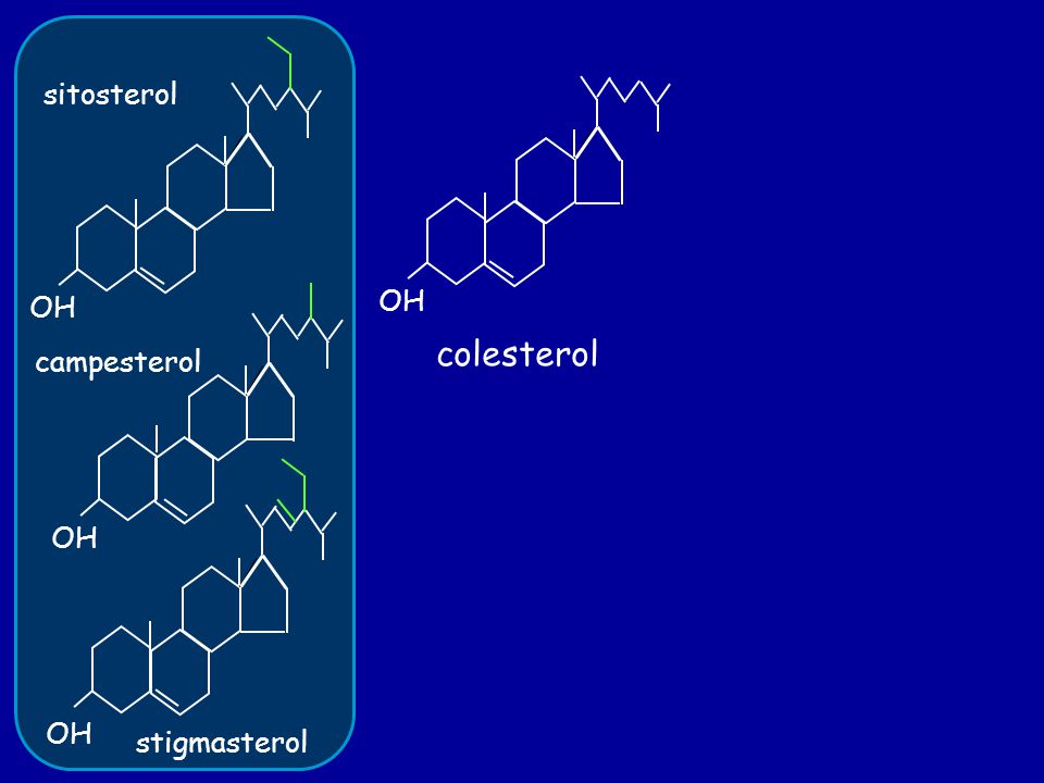 OH colesterol OH sitosterol campesterol stigmasterol