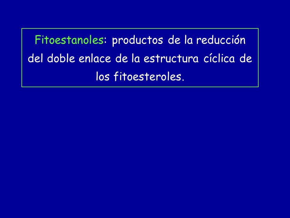 Fitoestanoles: productos de la reducción del doble enlace de la estructura cíclica de los fitoesteroles.