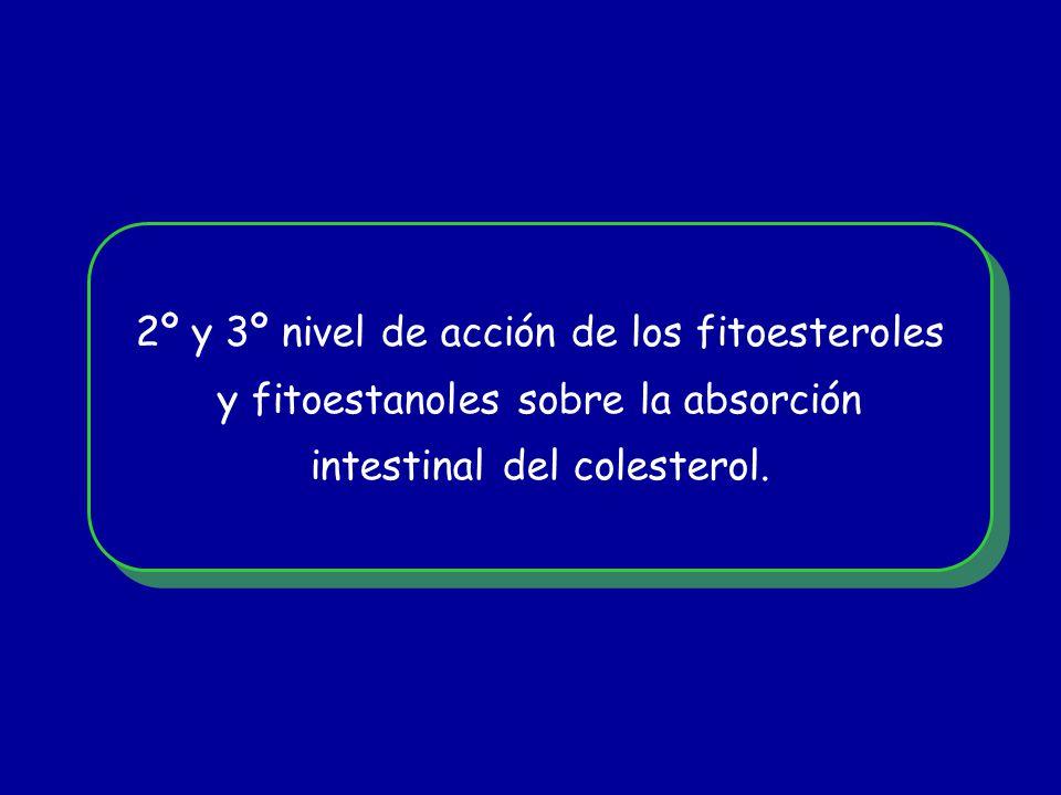 2º y 3º nivel de acción de los fitoesteroles y fitoestanoles sobre la absorción intestinal del colesterol. 2º y 3º nivel de acción de los fitoesterole