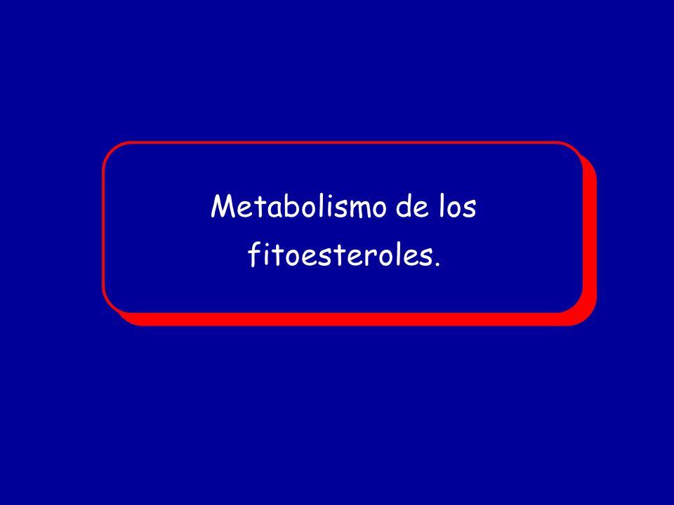 Metabolismo de los fitoesteroles. Metabolismo de los fitoesteroles.