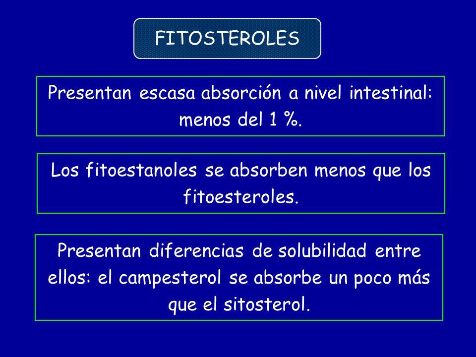 Presentan escasa absorción a nivel intestinal: menos del 1 %. FITOSTEROLES Presentan diferencias de solubilidad entre ellos: el campesterol se absorbe