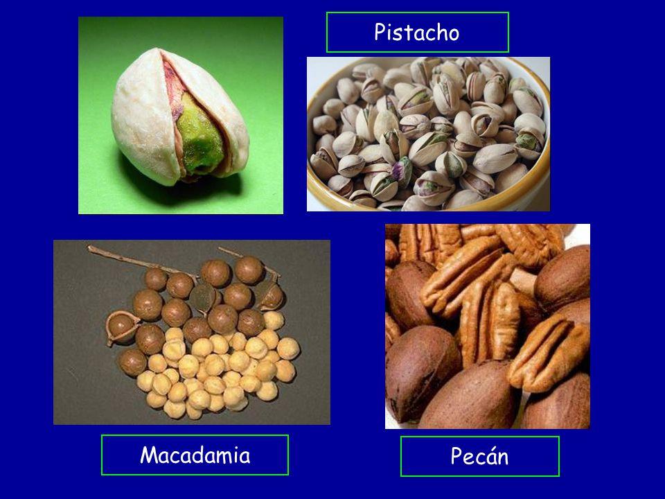 Pistacho Macadamia Pecán