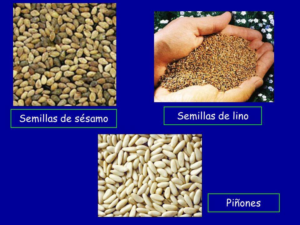 Semillas de sésamo Semillas de lino Piñones