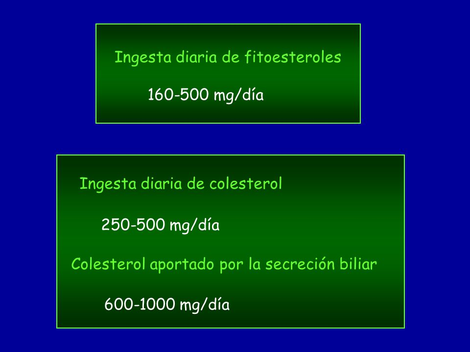 Ingesta diaria de fitoesteroles 160-500 mg/día 250-500 mg/día Ingesta diaria de colesterol Colesterol aportado por la secreción biliar 600-1000 mg/día