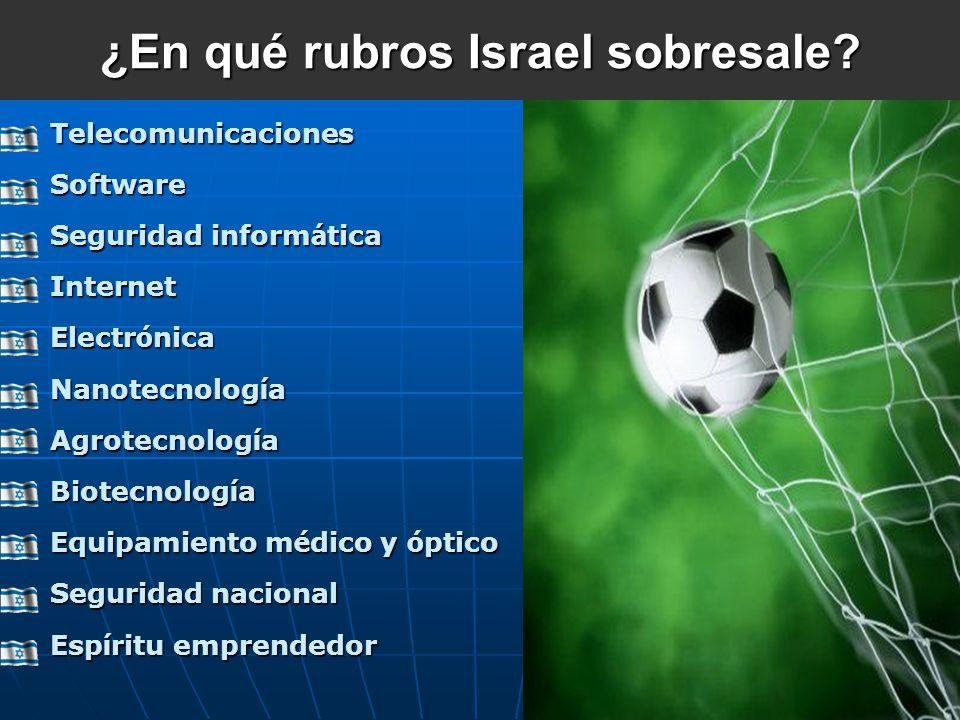 ¿En qué rubros Israel sobresale? TelecomunicacionesSoftware Seguridad inform á tica Internet Electr ó nica Nanotecnolog í a Agrotecnolog í a Biotecnol