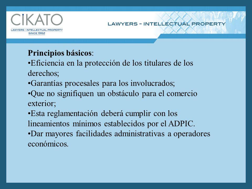 Principios básicos: Eficiencia en la protección de los titulares de los derechos; Garantías procesales para los involucrados; Que no signifiquen un obstáculo para el comercio exterior; Esta reglamentación deberá cumplir con los lineamientos mínimos establecidos por el ADPIC.