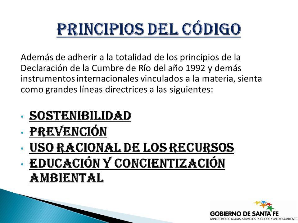 Además de adherir a la totalidad de los principios de la Declaración de la Cumbre de Río del año 1992 y demás instrumentos internacionales vinculados a la materia, sienta como grandes líneas directrices a las siguientes: Sostenibilidad Prevención Uso racional de los recursos Educación y concientización ambiental