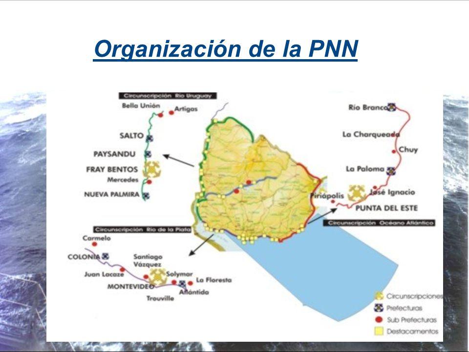 Organización de la PNN