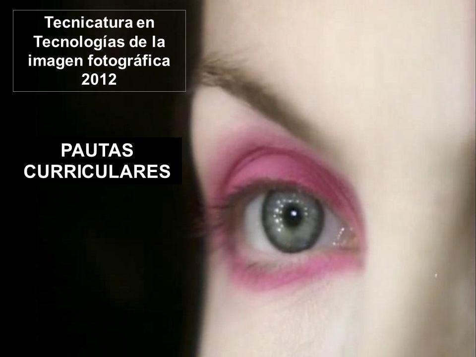 PAUTAS CURRICULARES Tecnicatura en Tecnologías de la imagen fotográfica 2012