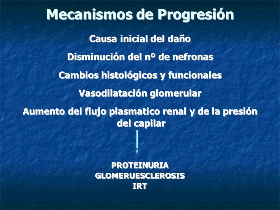 Mecanismos de Progresión Causa inicial del daño Disminución del nº de nefronas Cambios histológicos y funcionales Vasodilatación glomerular Aumento del flujo plasmatico renal y de la presión del capilar del capilarPROTEINURIAGLOMERUESCLEROSISIRT