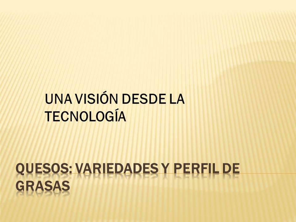 UNA VISIÓN DESDE LA TECNOLOGÍA