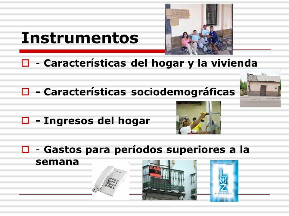 Instrumentos - Características del hogar y la vivienda - Características sociodemográficas - Ingresos del hogar - Gastos para períodos superiores a la