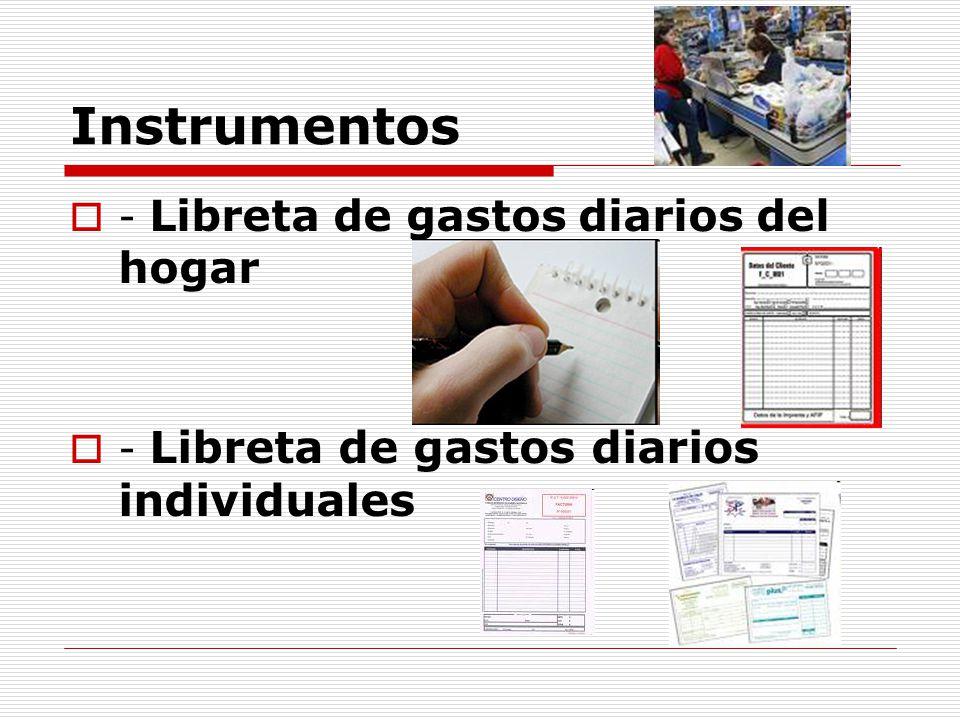 Instrumentos - Libreta de gastos diarios del hogar - Libreta de gastos diarios individuales