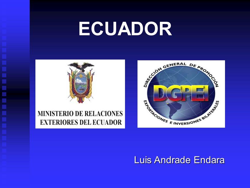 PLAN NACIONAL DE PROMOCION DE EXPORTACIONES DEL ECUADOR 2001-2010 Objetivo General: Objetivo General: Contribuir con crecimiento absoluto, relativo, sostenible y diversificado de las exportaciones no petroleras en el mercado internacional.