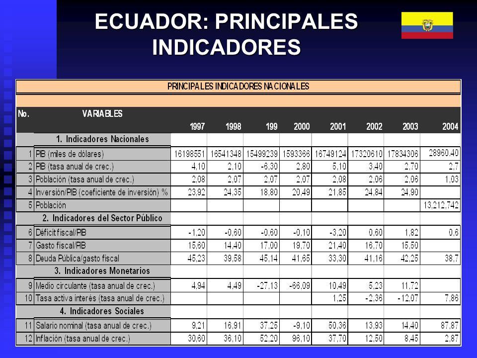 PRODUCTO INTERNO BRUTO 1980 – 2004 Al final de cada año (En millones de dólares corrientes) * Provisional Fuente: Banco Central del Ecuador, Setenta años de Información Estadística, pág.