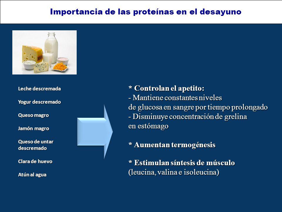 Importancia de las proteínas en el desayuno * Controlan el apetito: - Mantiene constantes niveles de glucosa en sangre por tiempo prolongado - Disminuye concentración de grelina en estómago * Aumentan termogénesis * Estimulan síntesis de músculo (leucina, valina e isoleucina) Leche descremada Yogur descremado Queso magro Jamón magro Queso de untar descremado Clara de huevo Atún al agua