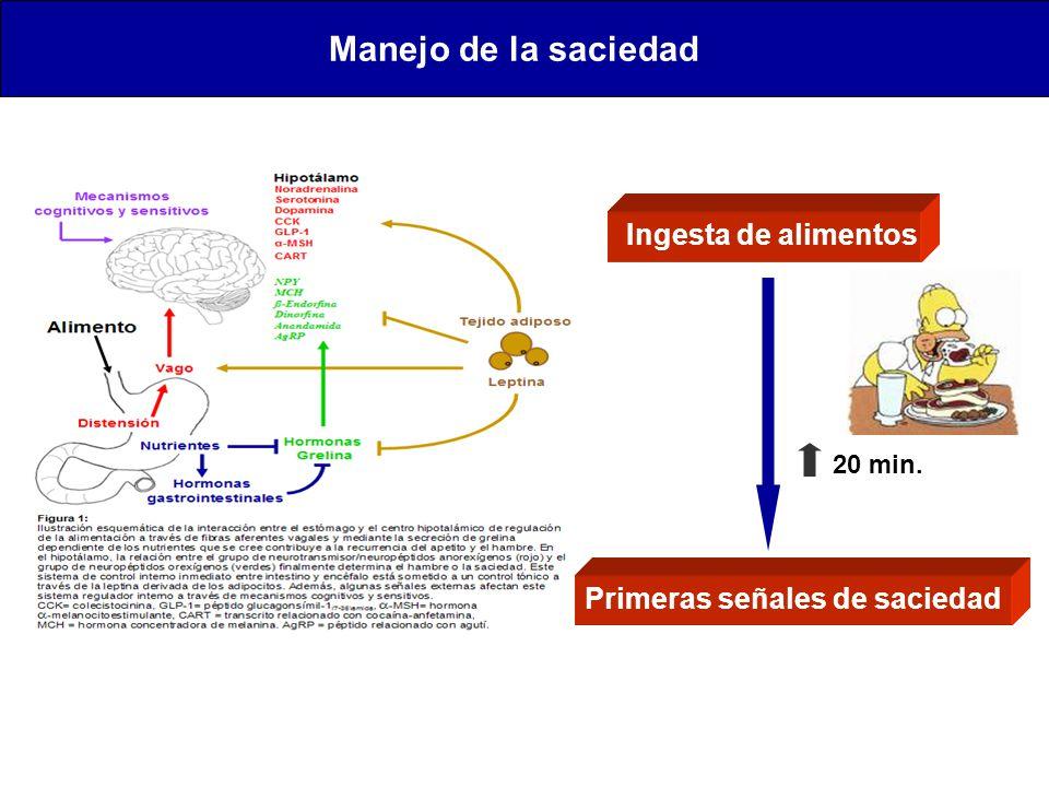 Manejo de la saciedad Ingesta de alimentos Primeras señales de saciedad 20 min.