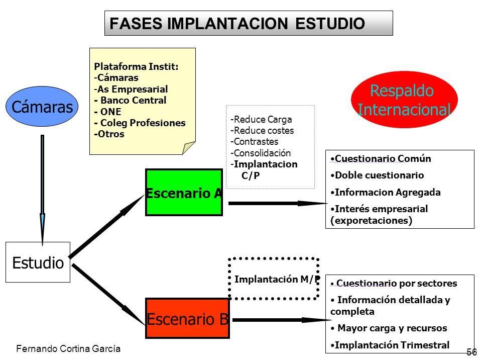Fernando Cortina García 56 Cuestionario por sectores Información detallada y completa Mayor carga y recursos Implantación Trimestral FASES IMPLANTACIO