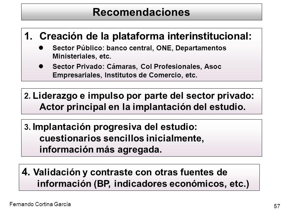 Fernando Cortina García 57 Recomendaciones 1.Creación de la plataforma interinstitucional: Sector Público: banco central, ONE, Departamentos Ministeri