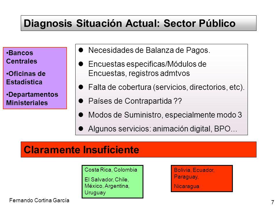 Fernando Cortina García 7 Diagnosis Situación Actual: Sector Público Necesidades de Balanza de Pagos. Encuestas especificas/Módulos de Encuestas, regi