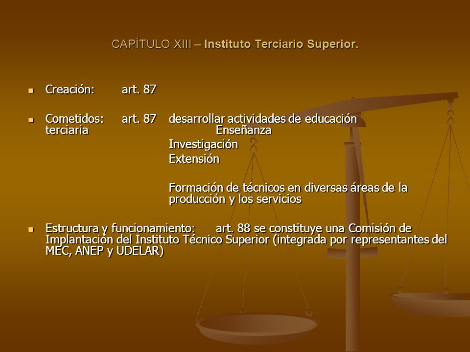 CAPÍTULO XIII – Instituto Terciario Superior. Creación:art.